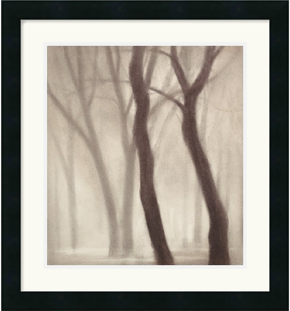 "20x22"" Gretchen Hess Forest III Framed Print"