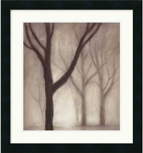 Amanti Art Gretchen Hess Forest I Framed Print AA114033