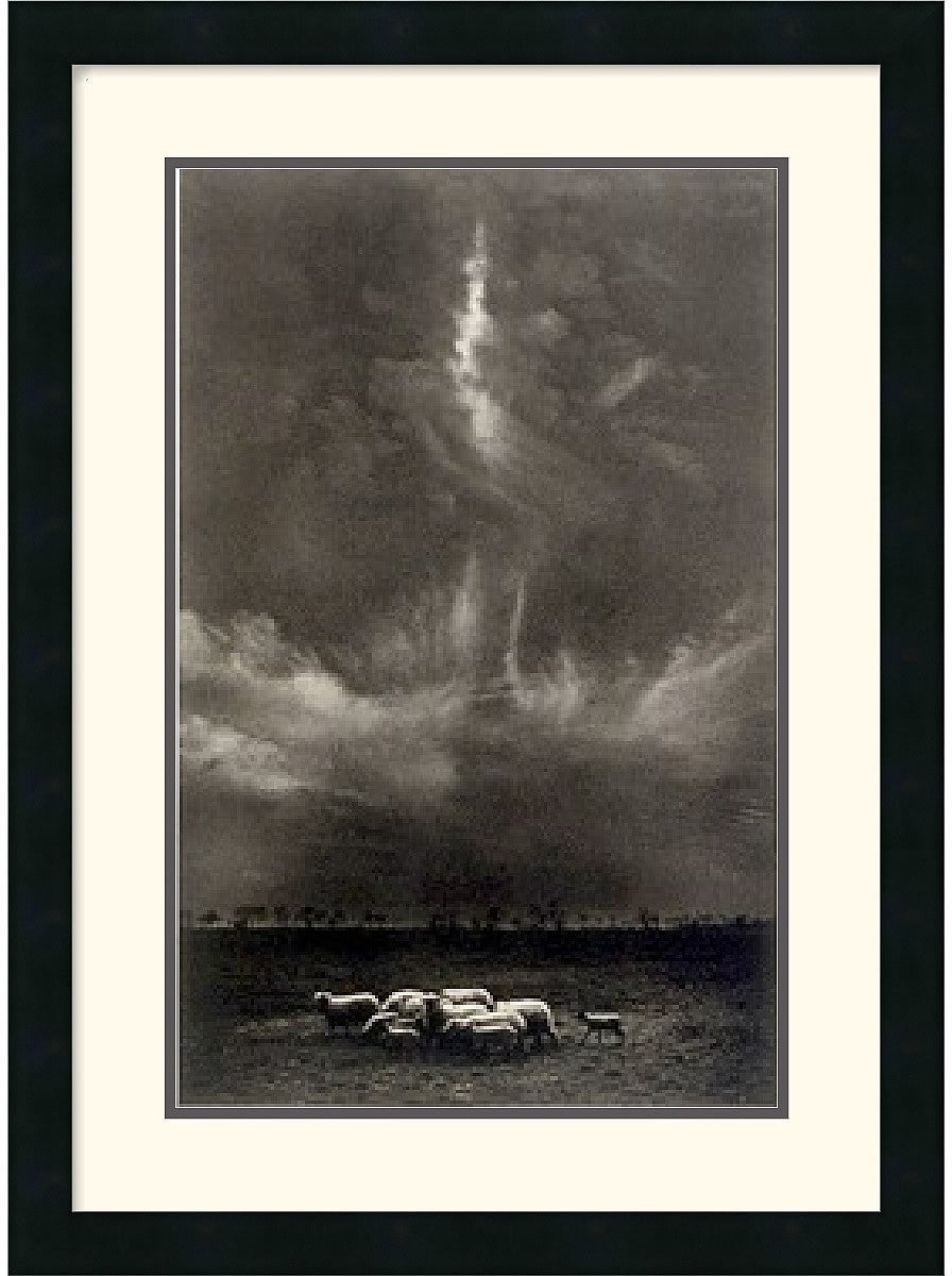 "20x27"" Harold Feinstein Sheep Under Clouds 1958 Framed Print"