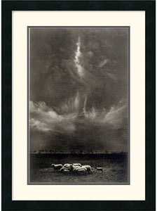 Amanti Art Harold Feinstein Sheep Under Clouds 1958 Framed Print AA140488