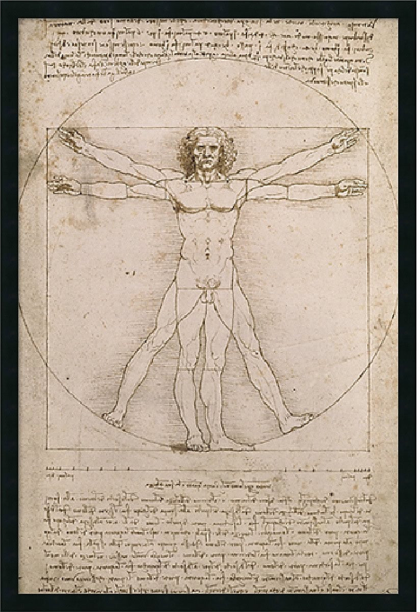 "38""H x 26""W Leonardo da Vinci Proportions of the Human Figure Vitruvian Man Framed Print"