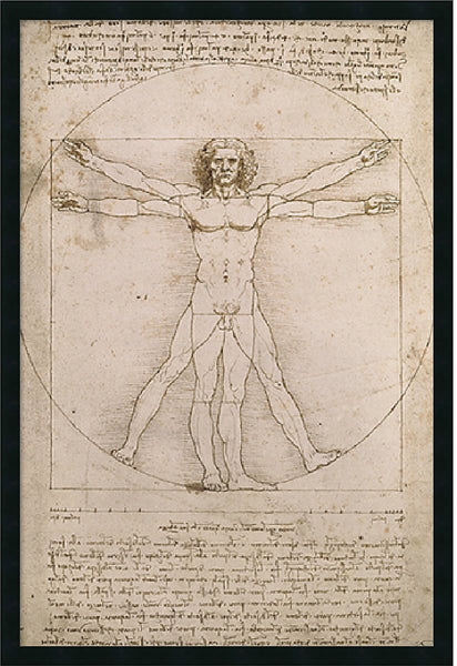 "25x37"" Leonardo da Vinci Proportions of the Human Figure Vitruvian Man Framed Print"