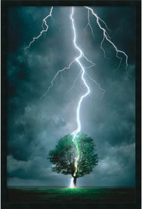 "37x25"" Lightning Striking Tree Framed Art Gel Coated"