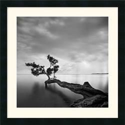 Amanti Art Moises Levy Water Tree Framed Print AA113535