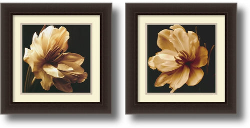 Amanti Art Timeless Grace Framed Art Dark Espresso AA406523