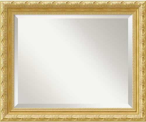 Amanti Art Versailles Mirror Medium Framed Mirror AA01368