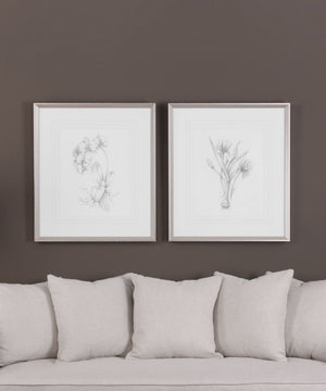 "32""H x 28""W Botanical Sketches Framed Prints Set of 2"