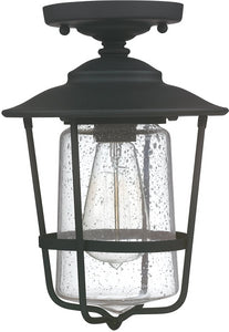 Capital Lighting Creekside 1-Light Outdoor Ceiling Black 9607BK