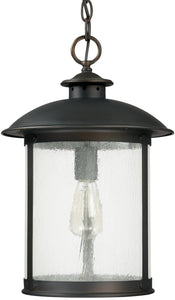 Capital Lighting Dylan 1-Light Outdoor Hanging Lantern Old Bronze 9564OB