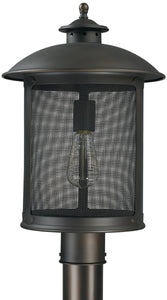 Capital Lighting Dylan 1-Light Outdoor Hanging Lantern Old Bronze 9615OB