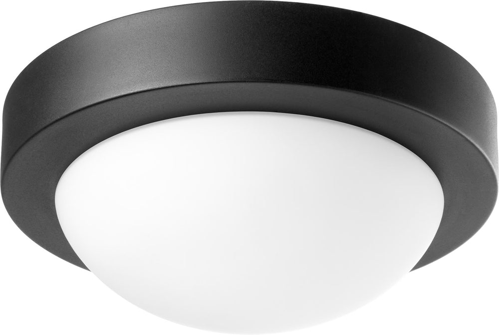 "9""W 1-light Wall Mount Light Fixture Noir"