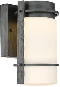 Designers Fountain Aldridge -Light Outdoor Wall Light Weathered Iron LED34301-WI