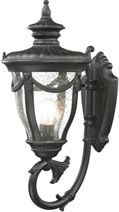 Elk Lighting Anise 1-Light Outdoor Wall Light Textured Matte Black 45076/1