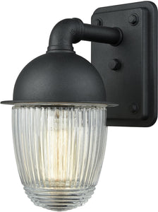 Elk Lighting Channing 1-Light Outdoor Wall Sconce Matte Black/Clear Ribbed Glass 452501