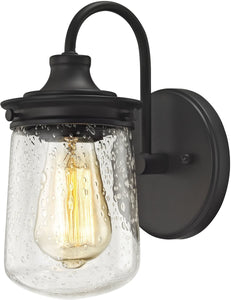 Elk Lighting Hamel 1-Light Vanity Oil Rubbed Bronze/Clear Seedy Glass 812101