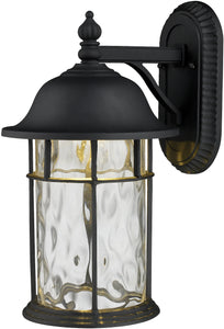 Elk Lighting Lapuente 1-Light LED 14'' Outdoor Wall Sconce Matte Black with Transparent Glass 422601