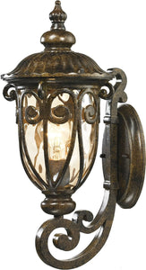 Elk Lighting Logansport 1-Light Outdoor Wall Light Hazelnut Bronze 45070/1