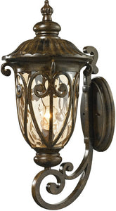 Elk Lighting Logansport 1-Light Outdoor Wall Light Hazelnut Bronze 45072/1