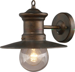 Elk Lighting Maritime 1-Light Outdoor Wall Lantern Hazelnut Bronze/Clear Seeded 420051