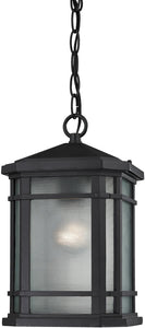"7""w 1-Light Outdoor Pendant Polished Nickel"
