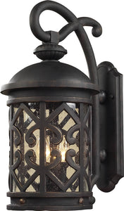 Elk Lighting Tuscany Coast 2-Light Outdoor Wall Lantern Weathered Charcoal/Clear Seeded 420612