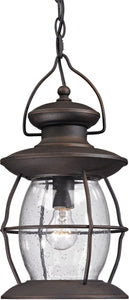 Elk Lighting Village Lantern 1-Light Outdoor Pendant Light Weathered Charcoal 47043/1
