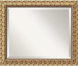 "20x24"" Florentine Gold Mirror Medium Framed Mirror"
