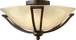 Hinkley Bolla 2-Light LED Bath Semi-Flush Olde Bronze 4660OBLED