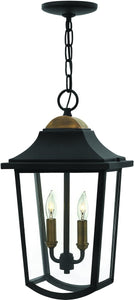 Burton 2-Light Outdoor Pendant Light Black 1972BK