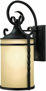 Hinkley Casa 1-Light Large Outdoor Wall Lantern Olde Black 1145OL