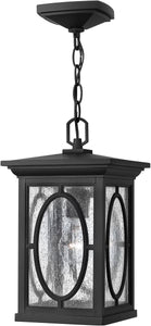 Hinkley Randolph 1-Light Hanger Outdoor Black 1492BK