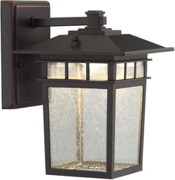 Lite Source Raiden 1-Light Outdoor Wall Dark Bronze LS16717