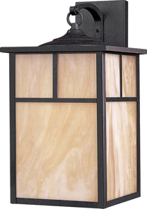 "16""h Coldwater EE 1-Light Outdoor Wall Mount Burnished"