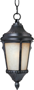 Maxim Odessa 1-Light Outdoor Hanging Lantern Espresso 3018LTES