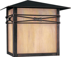 "10""h Taliesin 1-Light Outdoor Wall Mount Burnished"