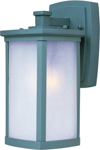 Terrace 1-Light Small Outdoor Wall Platinum