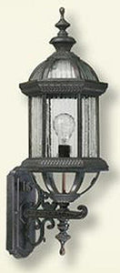 Quorum Stelton 1-Light Outdoor Wall Lantern Rustic Silver 781245