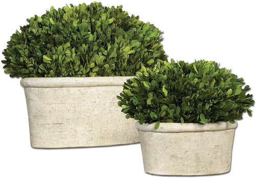 Uttermost Oval Domes Botanical Mossy Stone 60107