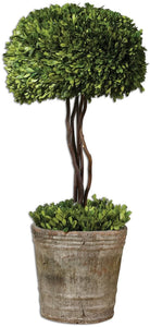 Uttermost Tree Topiary Botanical Mossy Stone 60095