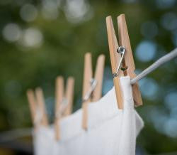 bamboo clothes pegs - 100% biodegradable