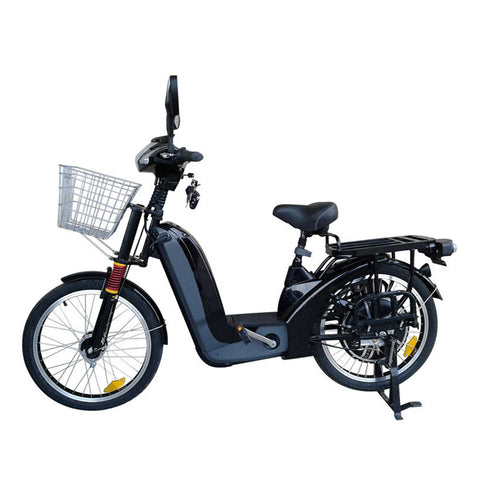 Heavy Loading Capacity E-Bike with Direct Drive System - shop.livefree.co.uk
