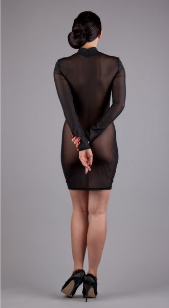 Sheer Mesh Long Sleeve High Neck Dress