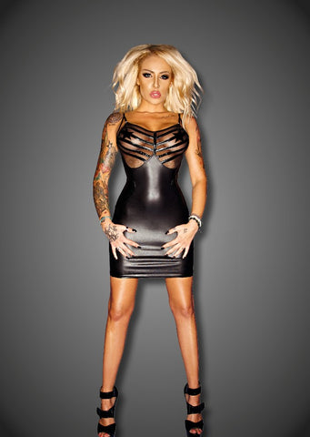 Matte Wetlook Dress with Mesh and PVC Accents