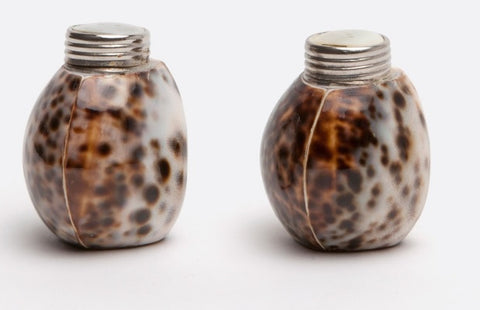 Shell Salt and Pepper Shaker Set