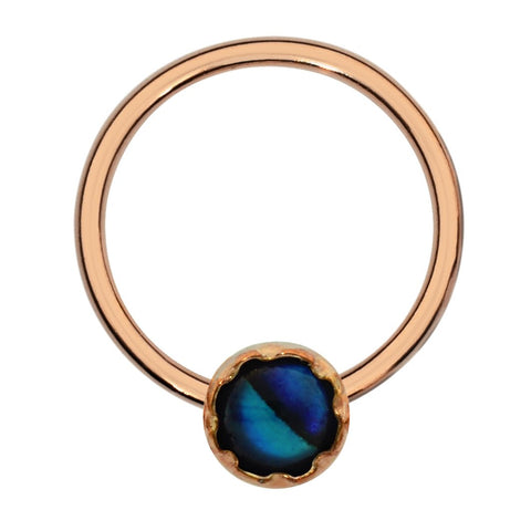 Septum Ring - Conch Ring - Nipple Ring 14K Solid Gold - 3mm Abalone Shell