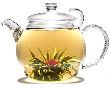 Flowering Tea Jasmine Lotus 35 bulbs