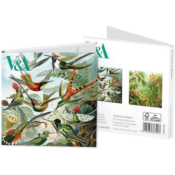 Forms in Nature Folded Notecards - Museums And Galleries (Pack of 8)