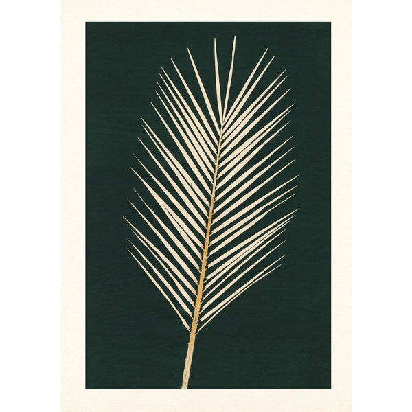 Palm Leaf Greeting Card - Artpress