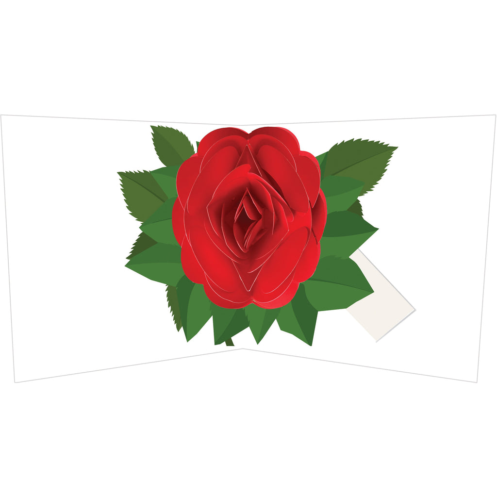 2-to-Tango- Pop-Up Card Simply a Red Rose     A beautifully handcrafted pop-up card created by one of the world's foremost paper engineers Maike Biederstadt, featuring a stunning red rose. This keepsake, unique card is sure to be treasured for a long time after the occasion intended.