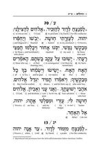 Load image into Gallery viewer, Interlinear Tehillim (5065455992967)